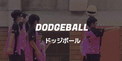 ドッジボール【マイライフスポーツ】